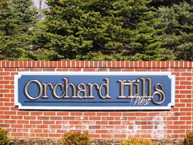 Neighborhood of Orchard Hills West in Novi, MI real estate