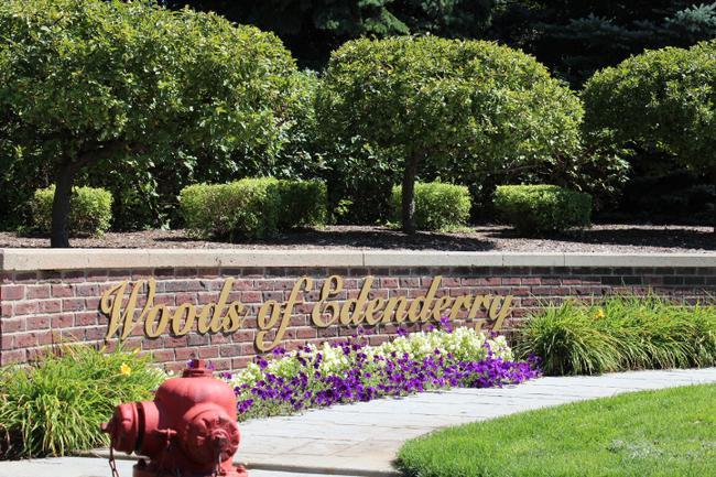 Luxury real estate in Woods of Edenderry in Northville, MI