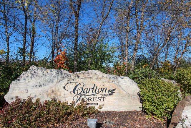 Carlton Forest Condos in Novi MI