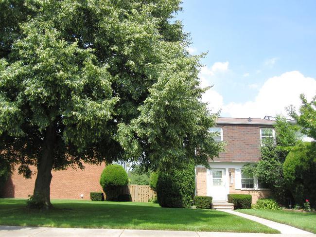 Novi Real Estate. Olde Orchard Condo Complex in Novi Mi 48375