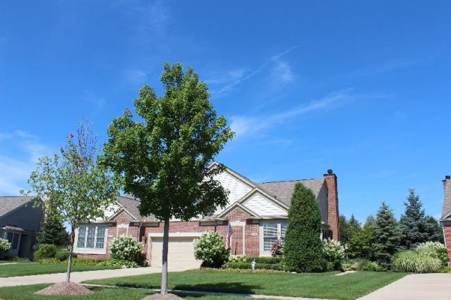 Woodlands of Northville real estate in Northville MI condos 11