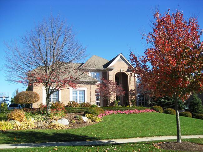 Neighborhood of Pheasant Hills in Northville, MI real estate 4