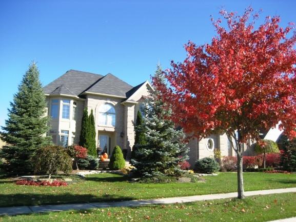Chase Farms neighborhood, Novi MI. Colonial home elevation 9