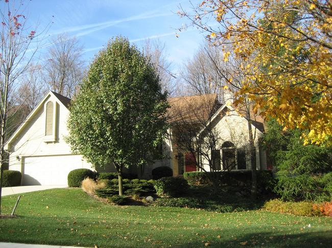 Timber Ridge Estates, Novi MI 48375 Elevation 4