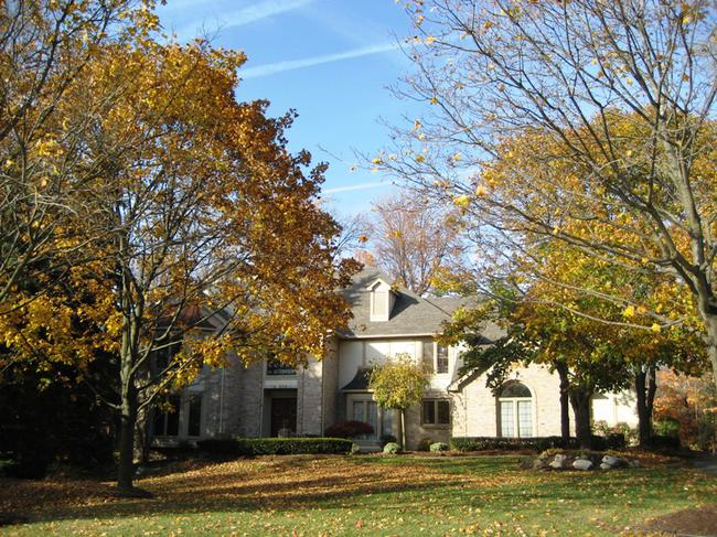 Timber Ridge Estates, Novi, MI 48167