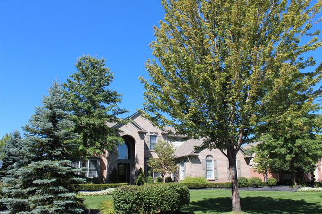 Luxury real estate in the Woodlands of Northville in Northville, MI 19