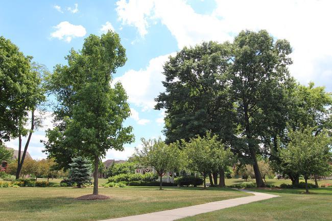 Neighborhoods in Walled Lake School District